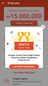 Penyebab Shopee PayLater Tidak Muncul Di Aplikasi